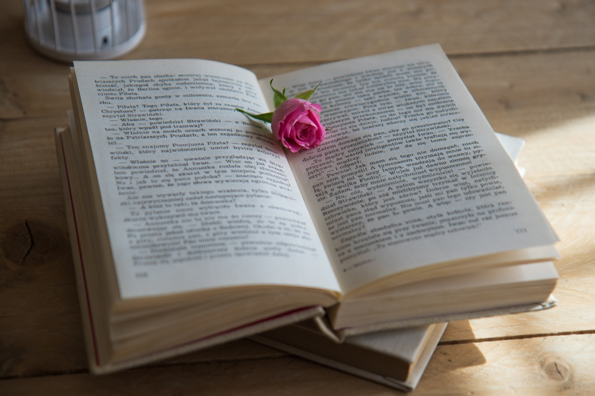 A book laid open with a pink rose between the pages